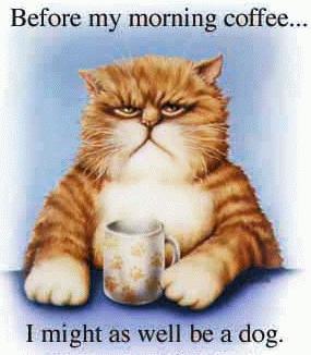 Coffee-Catf41832244ac7d56a.jpg