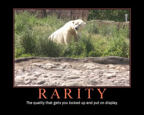 RARITY_demotivational_Poster_by_PippinRocks2403c45fd4d28832.jpg