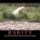 RARITY_demotivational_Poster_by_PippinRocks2403c45fd4d28832