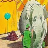 Thats-a-Bad-Elephanddb072c539d3faf5a